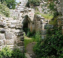 Jervaulx Abbey, Wensleydale by Jervaulx