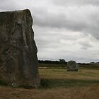 Stones at Avebury. by kissuquick