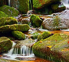 MOSSY ROCKS AND MOUNTAIN STREAM by Chuck Wickham