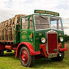 My Favourite Type Of Lorry by David J Knight