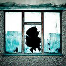 Broken Window by DeePhoto