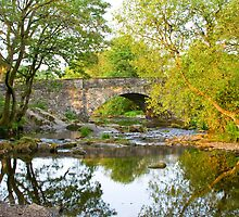Skelwith Bridge Nr Ambleside  by plumart