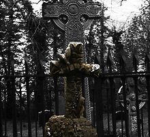 Maynooth Cross by Ian Murphy