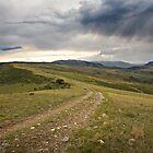 High Plateau by Kim Barton