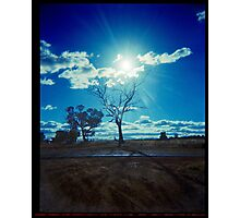 Turn your face to the sun..... Photographic Print