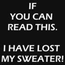 Lost Sweater by malazak
