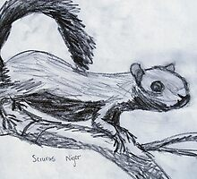 Squirrel by Geraldine M Leahy