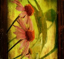 Antiqued Cone Flowers by Lois  Bryan