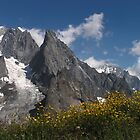 Tour du Mont Blanc - Aiguille Noire de Peuterey by Kat Simmons