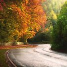 On the Road to Winter by Alan Watt