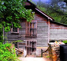 Old Mill House by Sharksladie