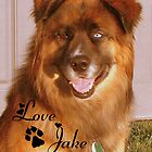 ~ Love Jake ~ by Madeline M  Allen