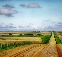 As Far As The Eye Can See by Vickie Emms