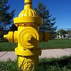 Red Hydrant Dream by StuttgenStudios