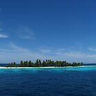 Kanapu Island II by Dr Andy Lewis
