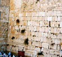 The Wailing Wall - Old City of Jerusalem, Israel by Carol Clifford