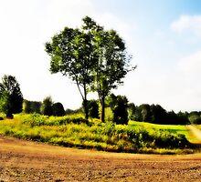 Horseshoe Bend by Lyana Votey