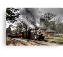 The Texas State Railroad Metal Print