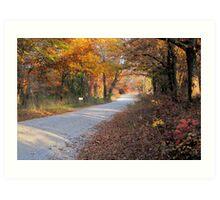 Country Fall Road Art Print