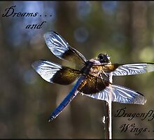 ~ Dreams And Dragonfly Wings ~ by WesternDreamer