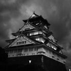 Osaka Castle by Alan Black