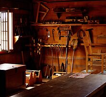 Sunlight and Sawdust by SheppardPhoto