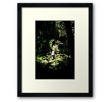spotlighted Framed Print