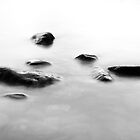 Rocks on Loch Lomond by Robert Wilson