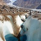 Glacier in alaska by jozi1