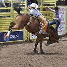 Bareback 3 Pikes Peak or Bust Rodeo by hedgie6