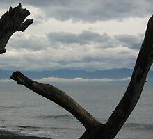 View Askew by KarinaLiberty