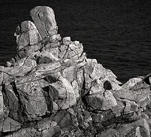 The Brainy Rock by Kofoed