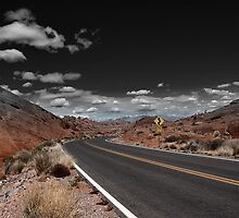 Life is a Highway 6 by MKWhite