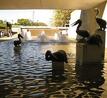 Pelican statues, water and fountains, Qld, Australia. by Marilyn Baldey