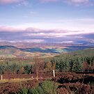 Strathtay in Autumn by derekwallace