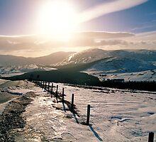 Winter sun by derekwallace
