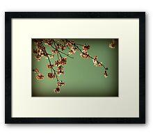 Elegance in bloom Framed Print