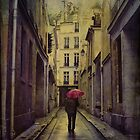 le  flneur sous la pluie by dawne polis