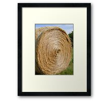 Find The Needle Framed Print