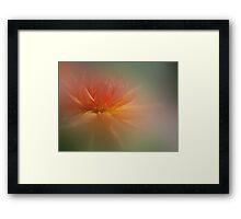 Dream Dahlia Framed Print