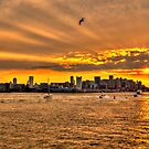 Golden Rays, Boston, MA by LudaNayvelt