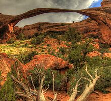 Landscape Arch by Terence Russell