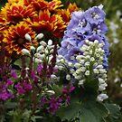 Herbachious Plants by AnnDixon