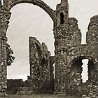 Holy Island Priory  by Nigel Bangert