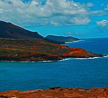Coastline East Oahu by Leslie Merrell