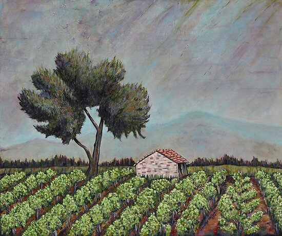 Chateauneuf Vineyard  by Joselyn Holcombe