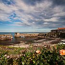 Craster by Simon Marsden