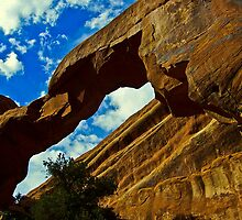 Wall Arch by Bob Moore