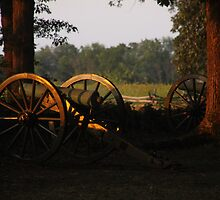 Canons at Sunrise by elisab