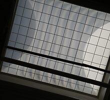 Acquirement of Light by dasSuiGeneris